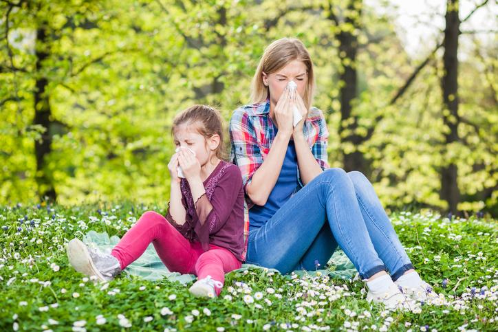 anti-allergiques-naturels